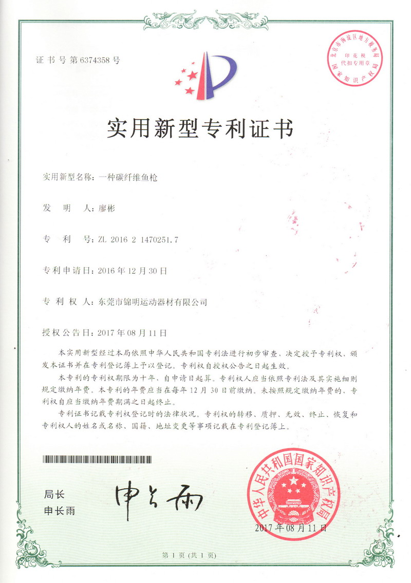 Patent Certificate 01