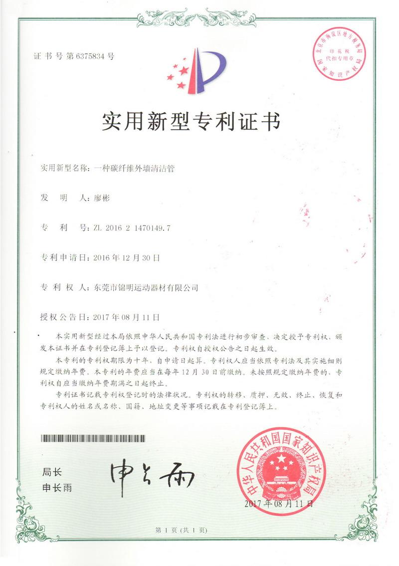 Patent Certificate 02