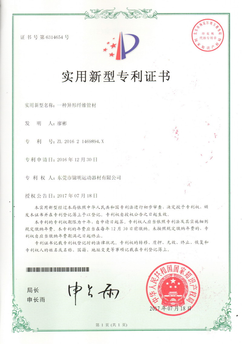 Patent Certificate 08